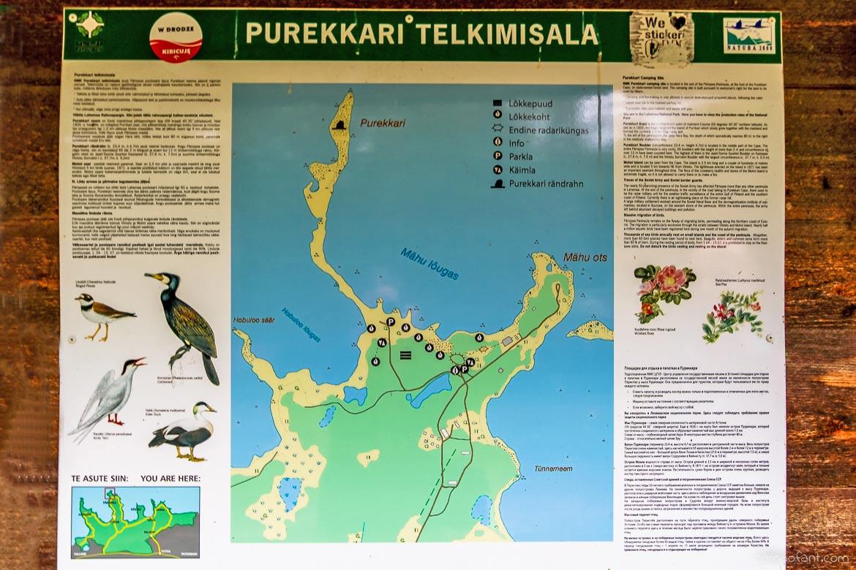 purekkari estland