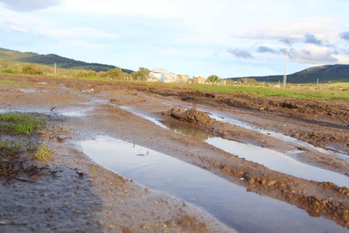 Tarifa, Schweinewiese nach Regen