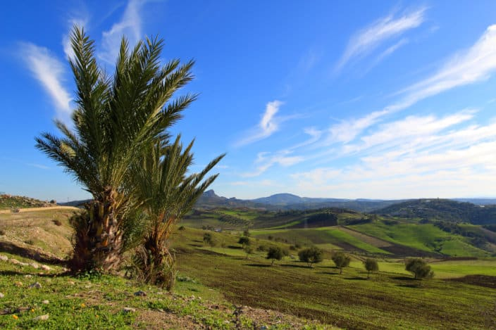 Frei stehen, Marokko, Wohnmobil