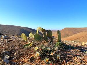 Reisetipps, Marokko, Wohnmobil, Reisen