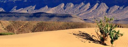 campofant, reiseblog, reiseberichte, weltreise, marokko
