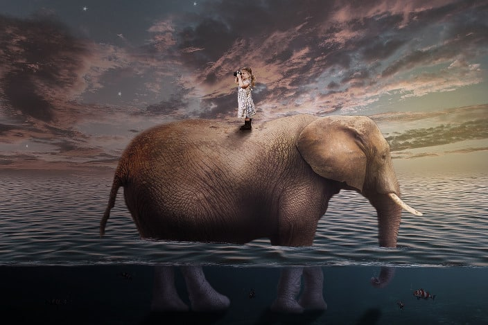 Elefant, Fantasy