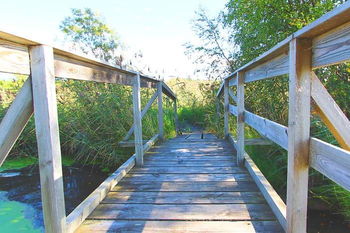 Holzbrücke Naturschutzgebiet