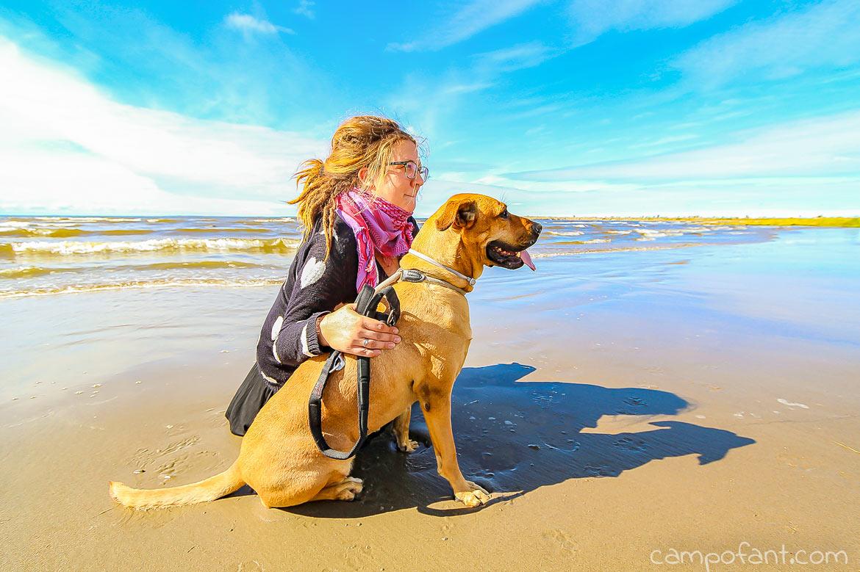 Norwegen Urlaub mit Hund, Einreise, Einreisebestimmungen