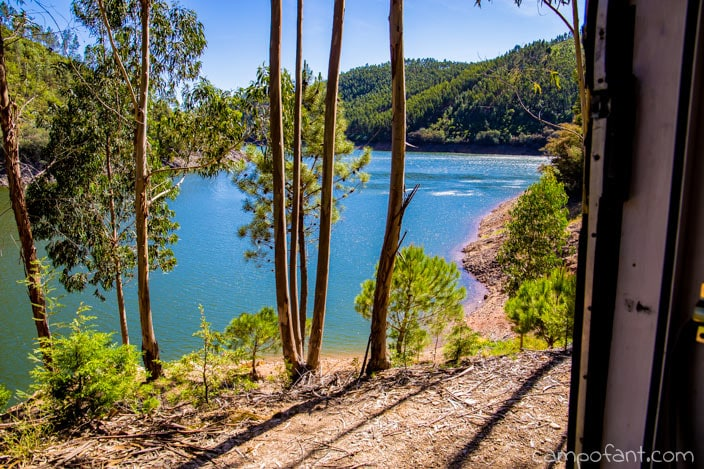 Eukalyptuswald Dornes
