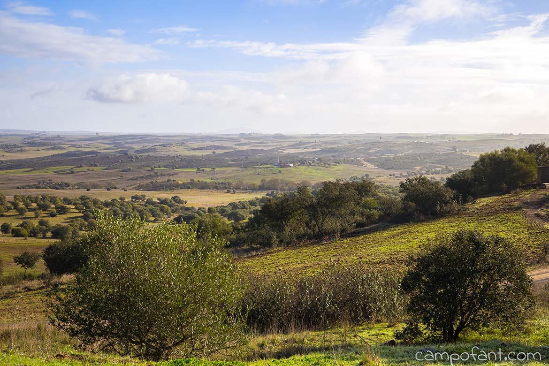 Castro Verde Panorama