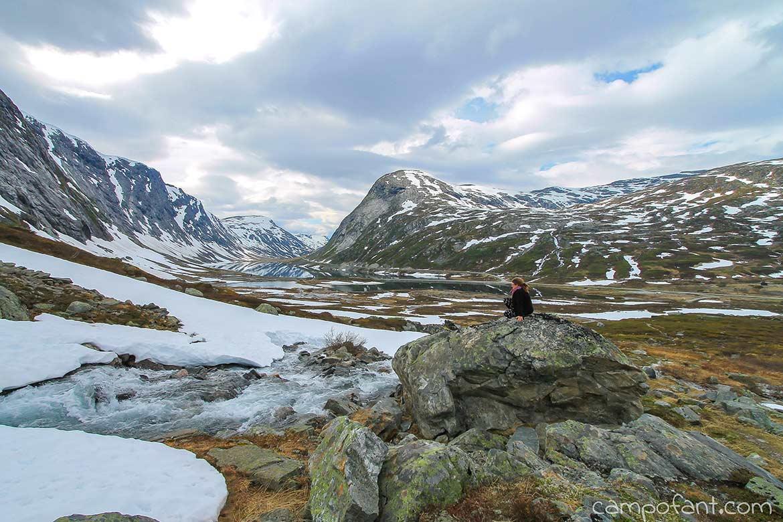 Norwegen, Goldene Route, Langvatnet