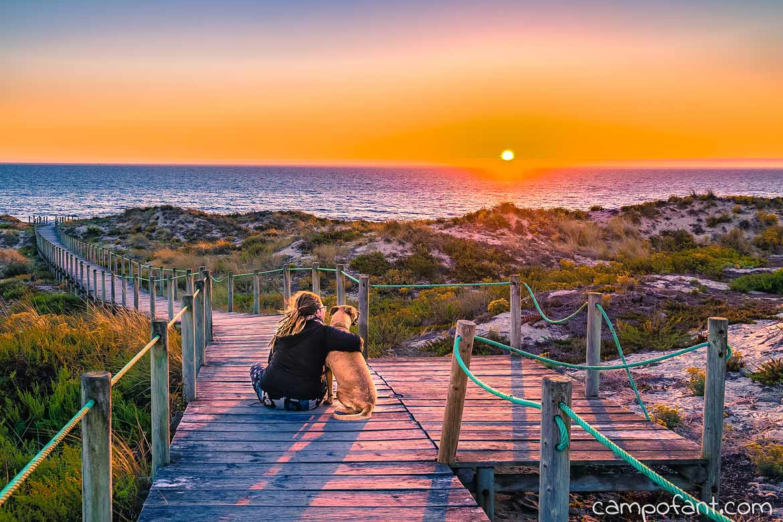 Portugal mit Hund