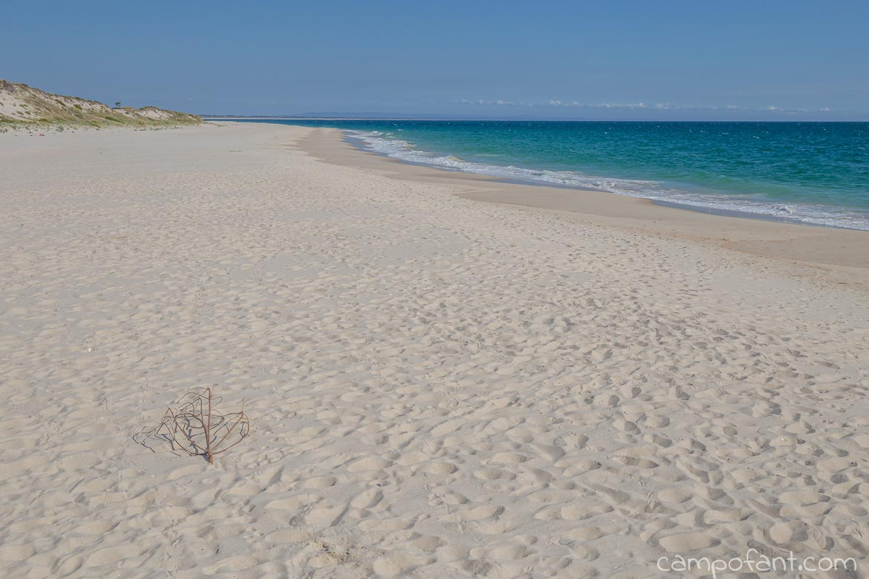 Strand Troia Westküste