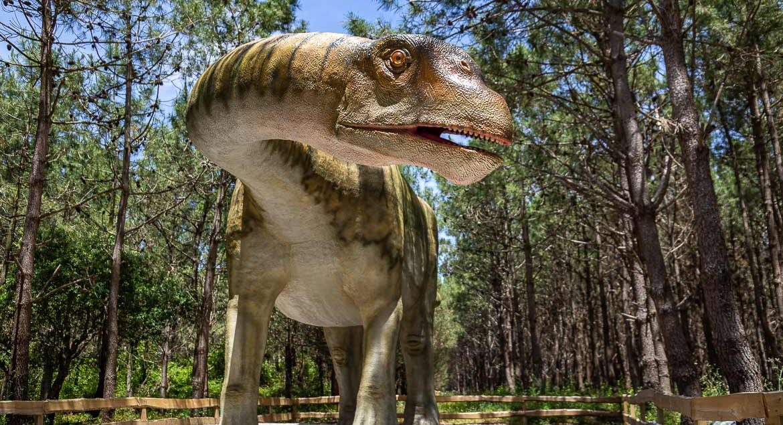 Dinopark Lourinha Themenpark Portugal