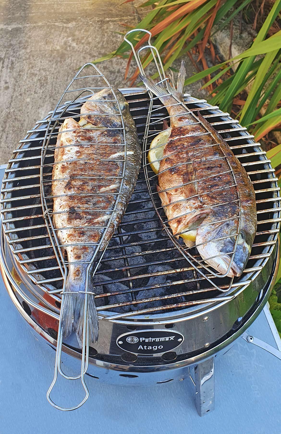 Petromax Atago grillen Fisch
