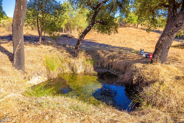 Teich Wasserversorgung