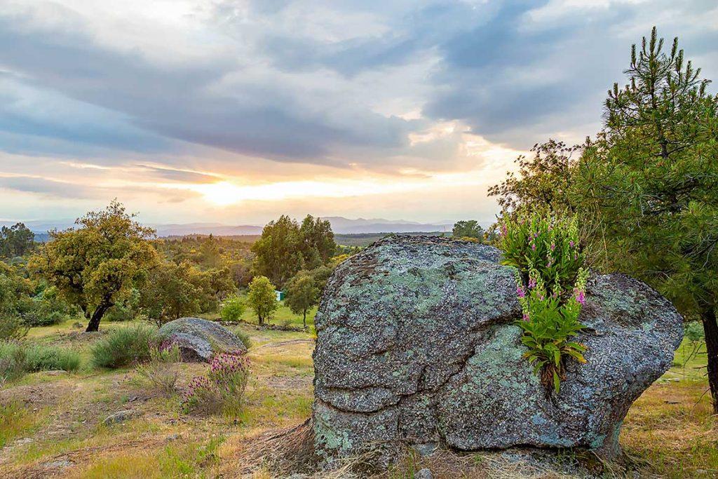 Grundstück kaufen in Portugal